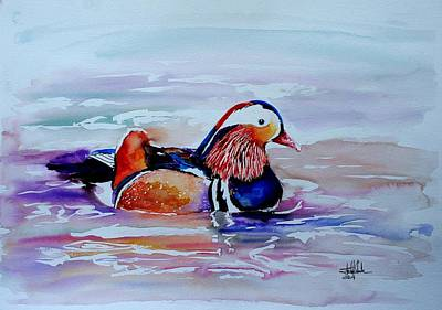 Puffin Drawing - Mandarin Duck by Isabel Salvador