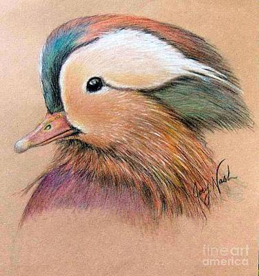 Mandarin Drawing - Mandarin Duck by Joey Nash