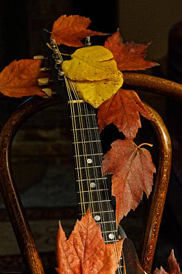 Photograph - Mandolin Autumn 1 by Mick Anderson