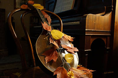 Photograph - Mandolin Autumn 2 by Mick Anderson