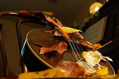 Photograph - Mandolin Autumn 3 by Mick Anderson