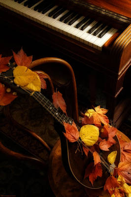 Photograph - Mandolin Autumn 5 by Mick Anderson
