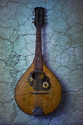 Beaten Up Photograph - Mandolin Mystery by Garry Gay