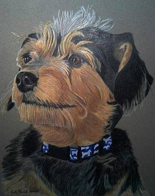 Drawing - Mandy - Terrier Mix Commission by Anita Putman