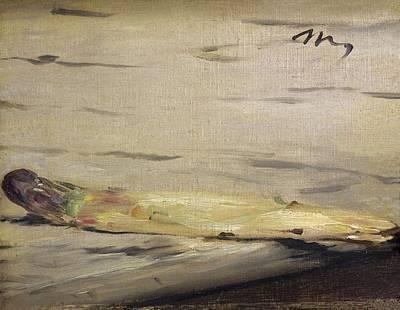 Impressionist Photograph - Manet, �douard 1832-1883. Asparagus by Everett