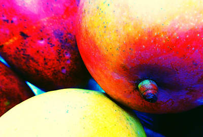Photograph - Mangos by Laurie Tsemak