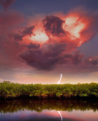 Hurricane Thunder Photograph - Mangrove Storm by Mal Bray