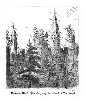 Everything Drawing - Manhattan Woods by James Stevenson