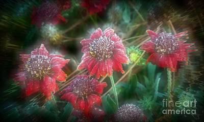 Photograph - Manipulated Scarlet Quartet by Julia Hassett