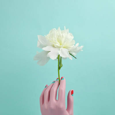 Photograph - Mannequin Hand Holding White Peony by Juj Winn