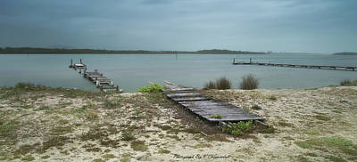 Black And White Horse Photography - Manning Point Broken Jetty 01 by Kevin Chippindall