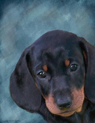 Dachshund Puppy Digital Art - Manny by Maryle Malloy