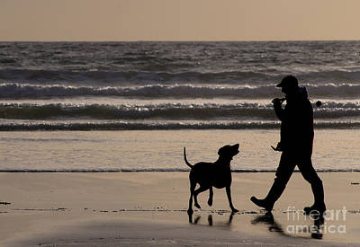 Dog At Beach Photograph - Man's Best Friend by Colin Woods