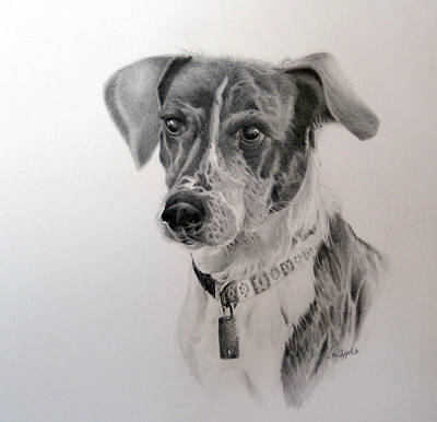 Drawing - Man's Best Friend by Lori Ippolito