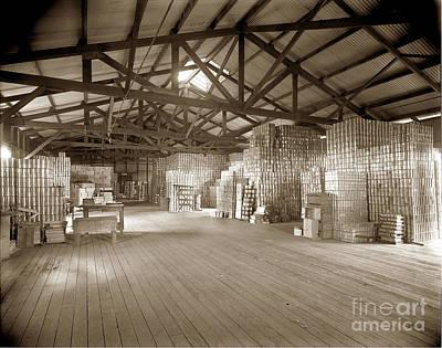 Photograph - Manteca Packing Company Interior California  Circa 1920 by California Views Archives Mr Pat Hathaway Archives
