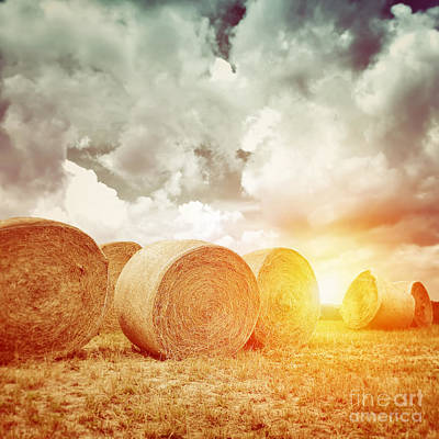Photograph - Many Dry Haystack In Sunset Light by Anna Om