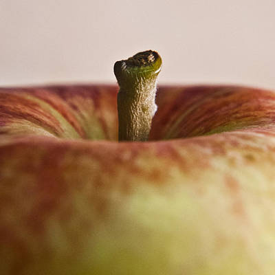 Photograph - Manzana by Christopher Prosser