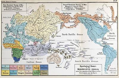 Social Darwinism Photograph - Map Of Human Origins, 1876 by Paul D. Stewart