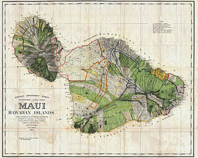 Geographic Drawing - Map Of Maui 1885 by Jon Neidert