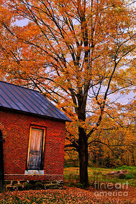 Photograph - Maple And Brick by Rick Bragan