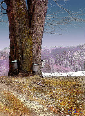 Sugaring Season Digital Art - Maple Buckets by Nancy Griswold