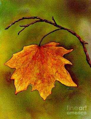 Art Print featuring the painting Maple Leaf In It's Yellow Splendor by Nan Wright