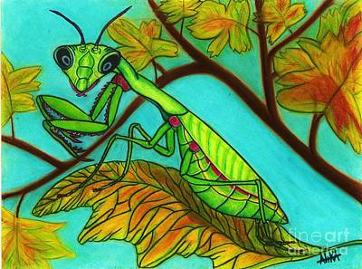 Alika Wall Art - Drawing - Maple Mantis by Alika Crooks