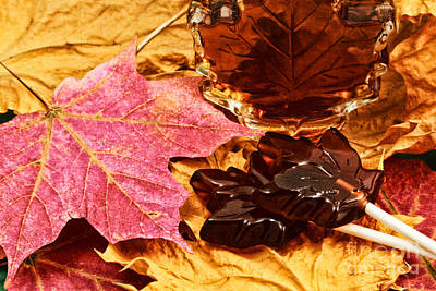 Photograph - Maple Sugar Memory by Charline Xia