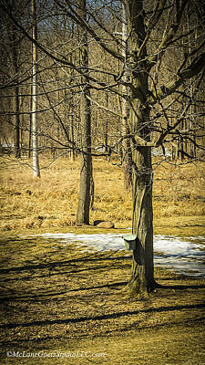 March Photograph - Maple Syrup Time by LeeAnn McLaneGoetz McLaneGoetzStudioLLCcom