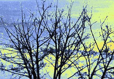 Digital Art - Maple Tree In Winter by Will Borden