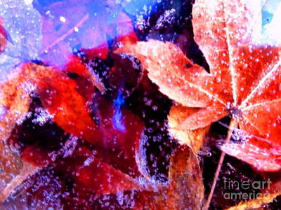 Maple Leaf Art Mixed Media - Maples On Ice by Michelle Stradford
