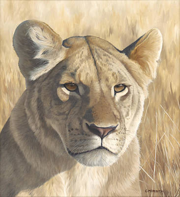 Painting - Mara Lioness by Clive Meredith
