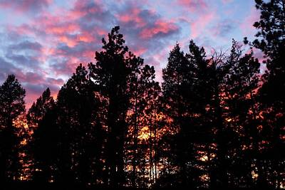 Photograph - Marbled Sunset by Marilyn Burton