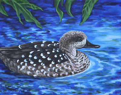 Marbled Teal Duck On The Water Art Print by Penny Birch-Williams