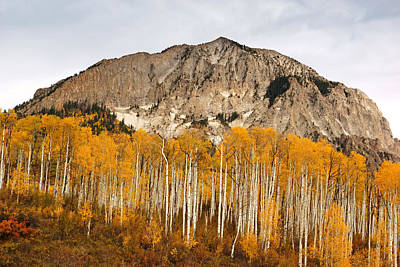 Photograph - Marcellina Mountain In Autumn by Daniel Woodrum