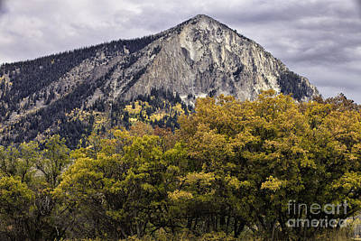 Photograph - Marcellina Mountain by Stuart Gordon