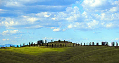 March Of The Cypress Trees Art Print