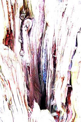March Wood Art Print