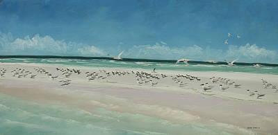 Marco Island Sandbar Original