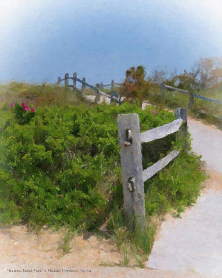 Marconi Beach Path Art Print by Michael DArienzo