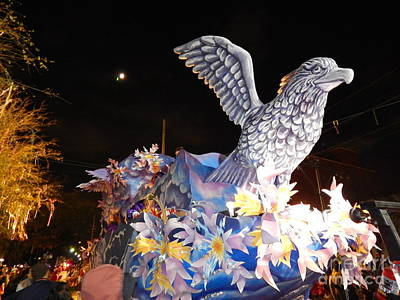 Photograph - Mardi Gras 2014 Mardi Gras Takes Flight by Michael Hoard