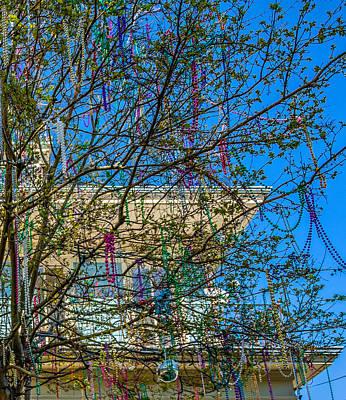 Mardi Gras Beads Photograph - Mardi Gras Beads Tree 2 by Steve Harrington