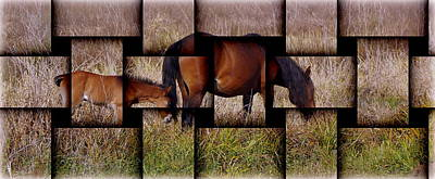 Photograph - Mare And Colt Weave by Sheri McLeroy