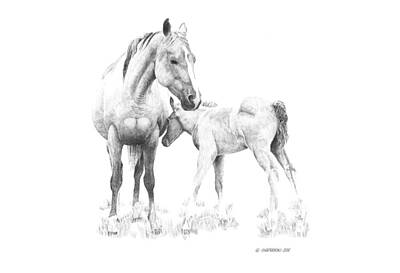 Wall Art - Drawing - Mare And Foal by Paul Shafranski