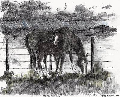 Art Print featuring the mixed media Mare And Foal by Tim Oliver
