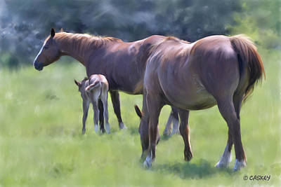 Caskey Wall Art - Painting - Mares And Foal by Bethany Caskey