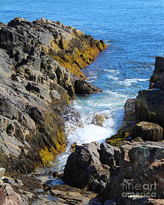 Photograph - Marginal Way Crevice by Jemmy Archer