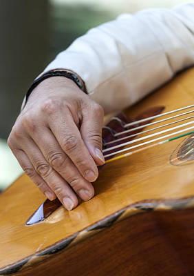Beastie Boys - Mariachi Guitarron by Robert Ullmann
