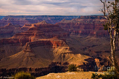 Photograph - Maricopa Point Overlook Grand Canyon by Bob and Nadine Johnston