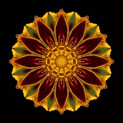 Print featuring the photograph Marigold Flower Mandala by David J Bookbinder